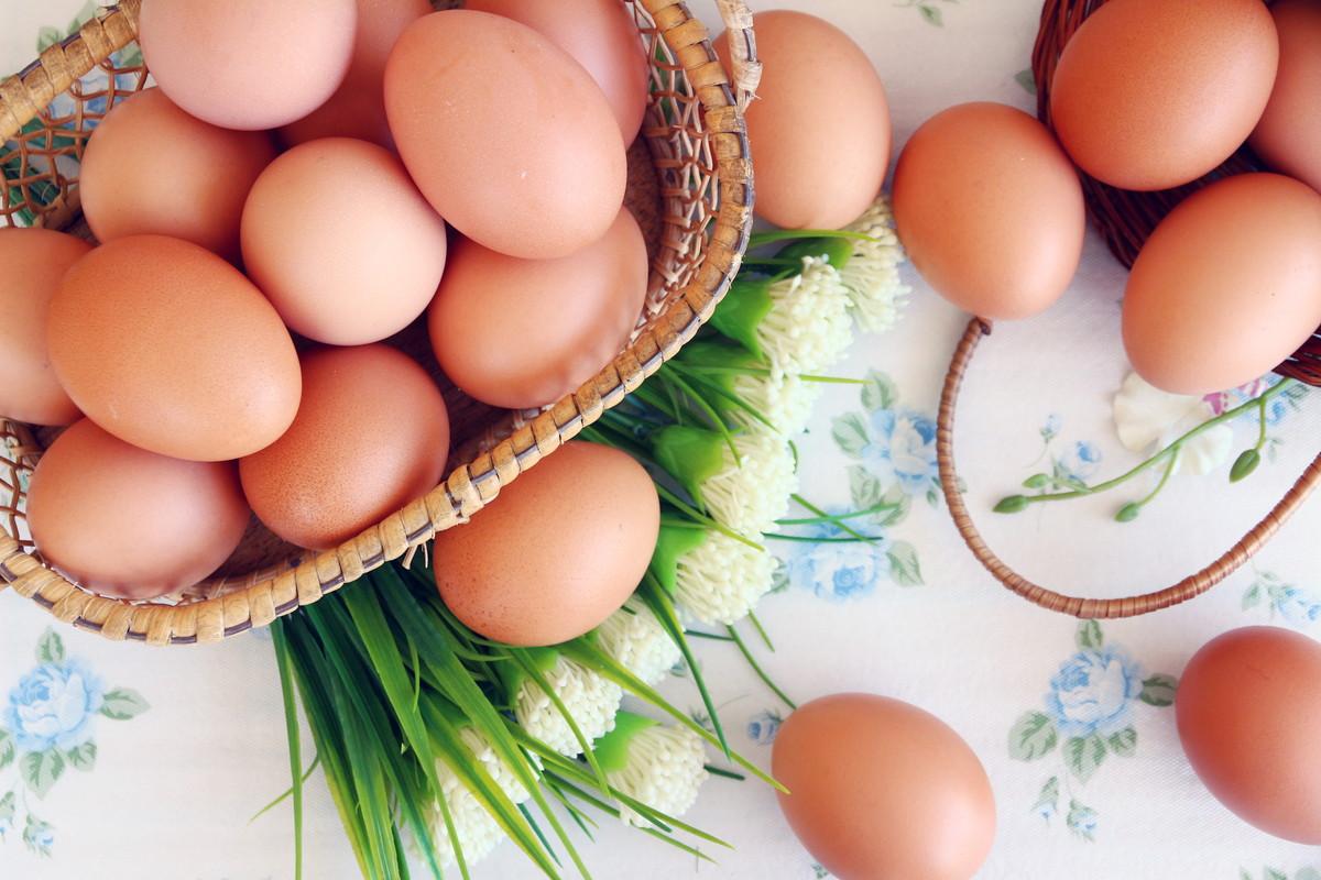 「ゆで卵で節約しよう」簡単に作れるレシピを活用して無駄なく調理を